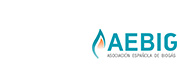 Media Sponsor AEBIG