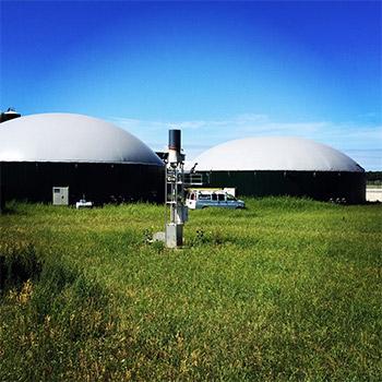 Athlone Farms