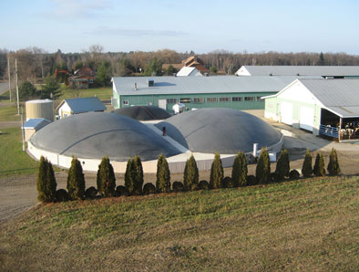 Fepro Farms