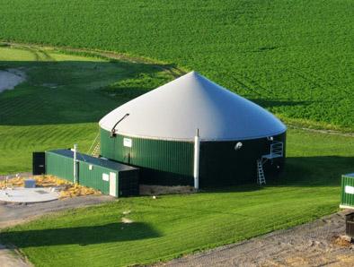 Ledgecroft Farms